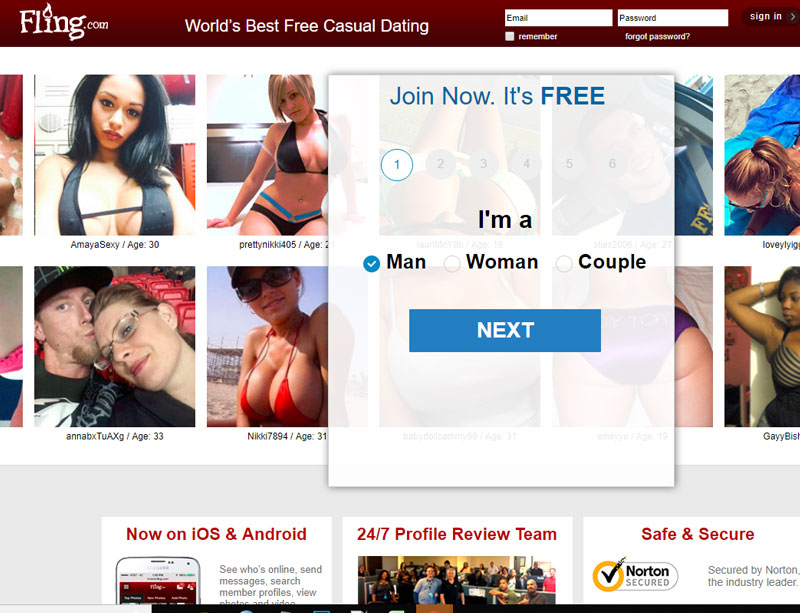 image of the Fling.com homepage